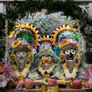 Their Lordships Jagannath, Balladev and Lady Subhadra