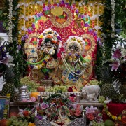 Sri Radha Gopivallabha