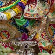 Sri Gopivallabha's Lotus Feet